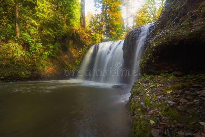 Спрятанные падения в Rock Creek Орегон стоковая фотография