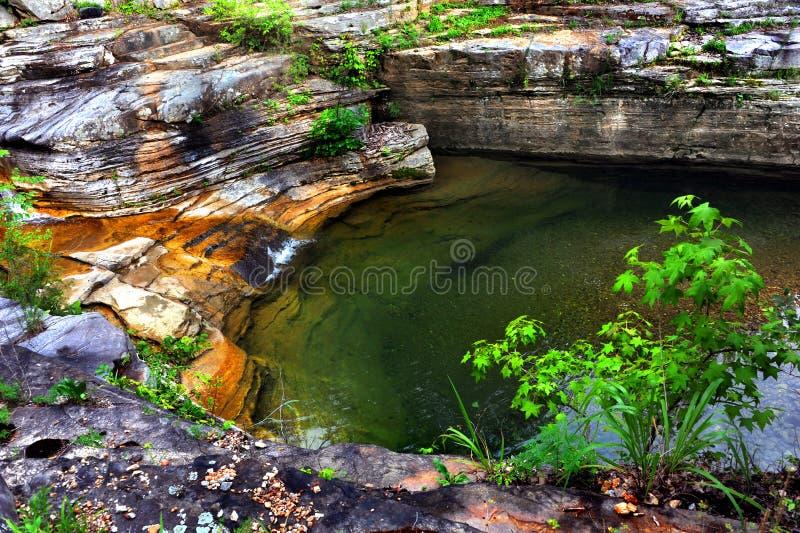 Спрятанный бассейн стоковое изображение