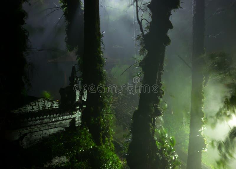 Спрятанный висок в мистическом лесе стоковое фото