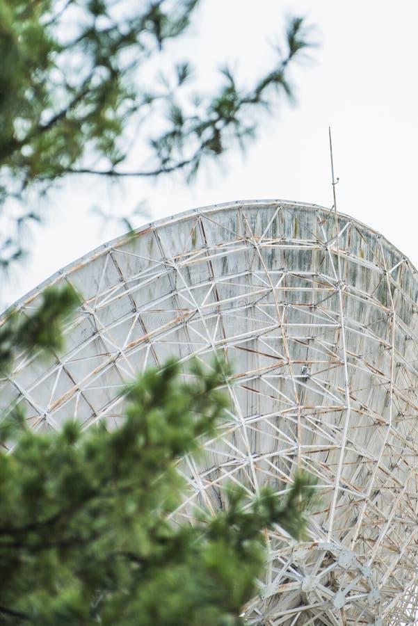 Спутниковая антенна-тарелка гигантского металла в поле с запачканной растительностью во фронте стоковые фото