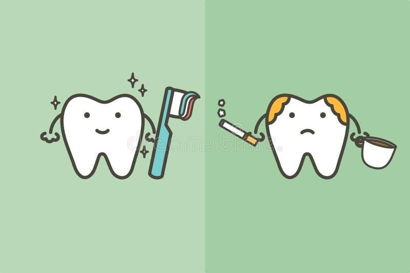 Сравните здорового белого зуба с чистя щеткой зубами и нездорового желтого зуба с металлической пластинкой от кофе и сигареты - з иллюстрация штока