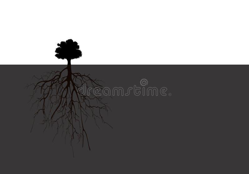 Сравните концепцию между деревом и своими корнями иллюстрация вектора