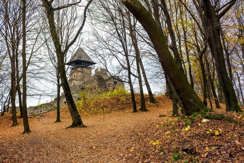 Средневековая крепость в лесе осени безлистном стоковая фотография