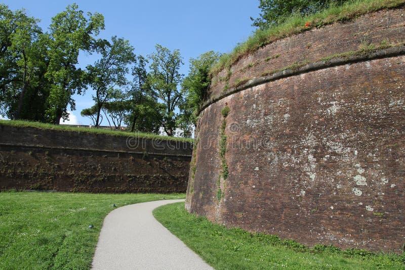 Средневековые стены Лукки стоковая фотография