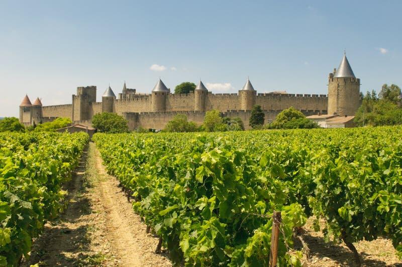 Средневековый городок Carcassonne и виноградников стоковая фотография rf