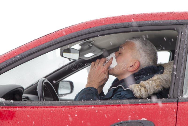 Средний постаретый человек чихает в автомобиле стоковая фотография rf