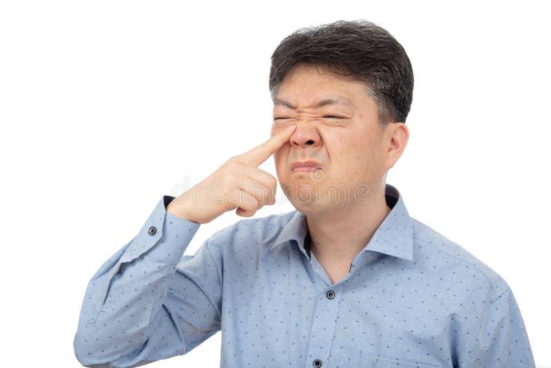 Средн-достигший возраста человек страдая от ринита на белой предпосылке стоковое фото rf