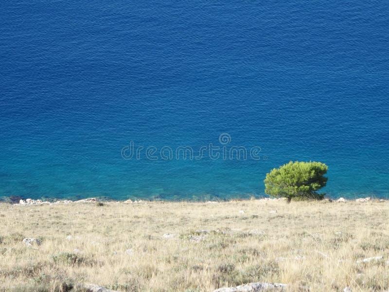 среднеземноморским взморьем стоковое изображение rf