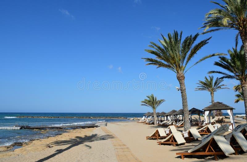 Среднеземноморское побережье в утре, Кипр стоковые фотографии rf