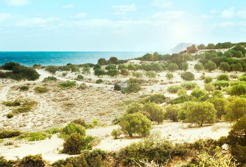 Среднеземноморской ландшафт стоковые изображения rf