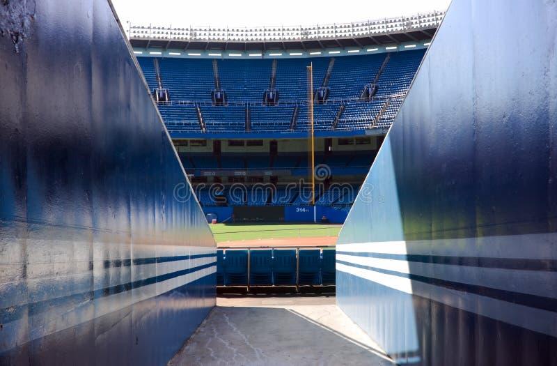 стадион бейсбола стоковое изображение