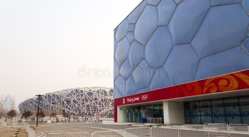 стадион aquatics разбивочный национальный стоковое фото