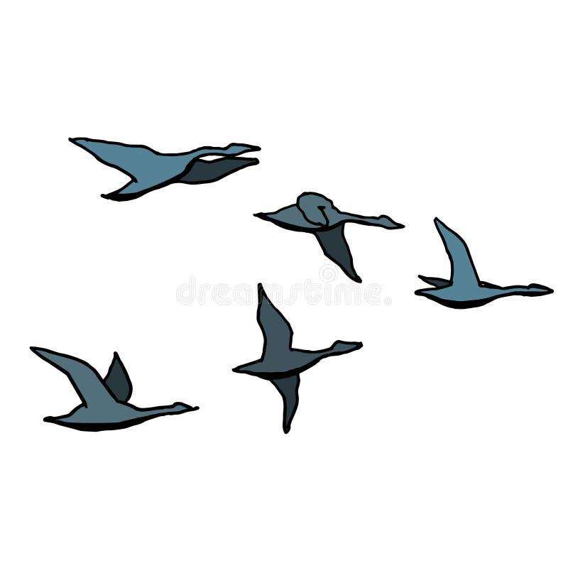 Стадо птицы осени План с другими цветами на белой предпосылке r иллюстрация вектора