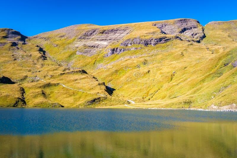 Сталкиваться Bachalpsee при пешем туризме сперва к Grindelwald Bernese Альпам, Швейцария стоковое изображение rf