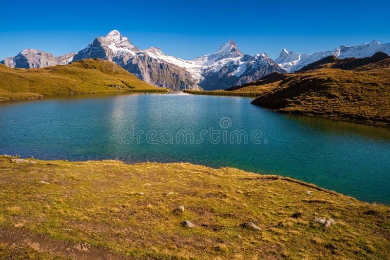Сталкиваться Bachalpsee при пешем туризме сперва к Grindelwald Bernese Альпам, Швейцария стоковое изображение