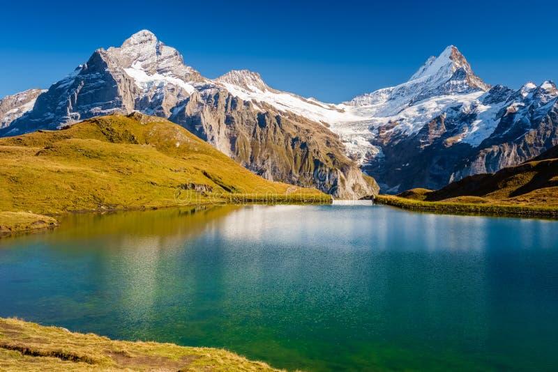 Сталкиваться Bachalpsee при пешем туризме сперва к Grindelwald Bernese Альпам, Швейцария стоковое фото
