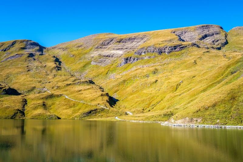 Сталкиваться Bachalpsee при пешем туризме сперва к Grindelwald Bernese Альпам, Швейцария стоковая фотография