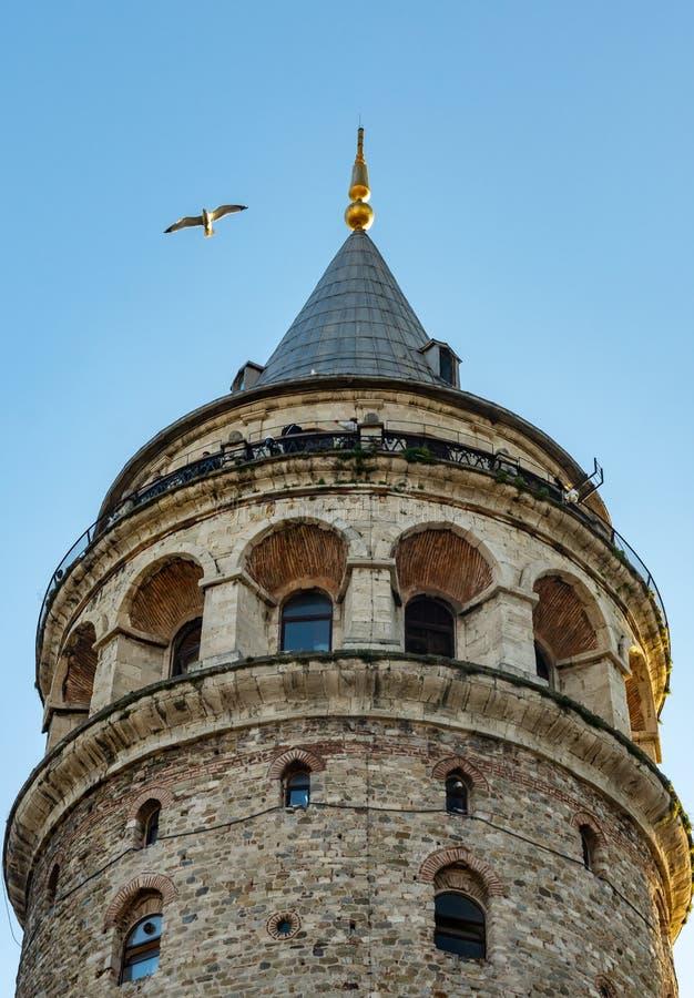 Стамбул, Турция 12-November-2018 Вид спереди верхней части башни Galata и летания птицы стоковые изображения