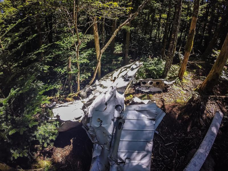 Старая авиационная катастрофа медленно растворяет в лесе стоковая фотография rf
