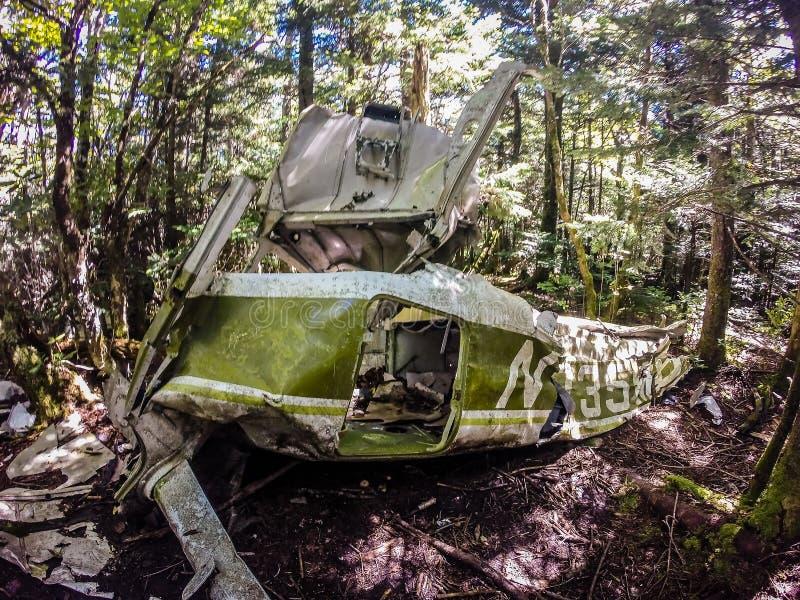 Старая авиационная катастрофа медленно растворяет в лесе стоковые фотографии rf