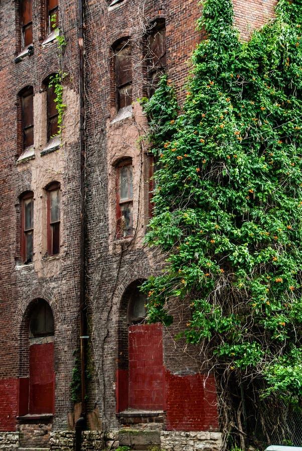 Старая архитектура кирпичного здания стоковое изображение rf