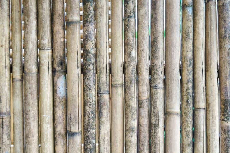 Старая бамбуковая предпосылка стены стоковое изображение