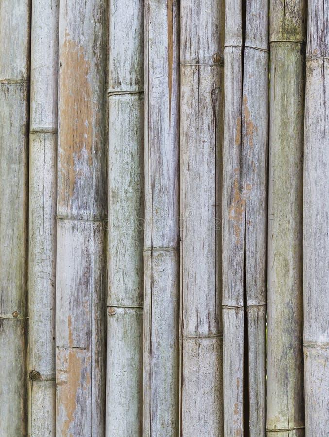 Download Старая бамбуковая предпосылка загородки Стоковое Фото - изображение насчитывающей прямо, ручка: 41652724