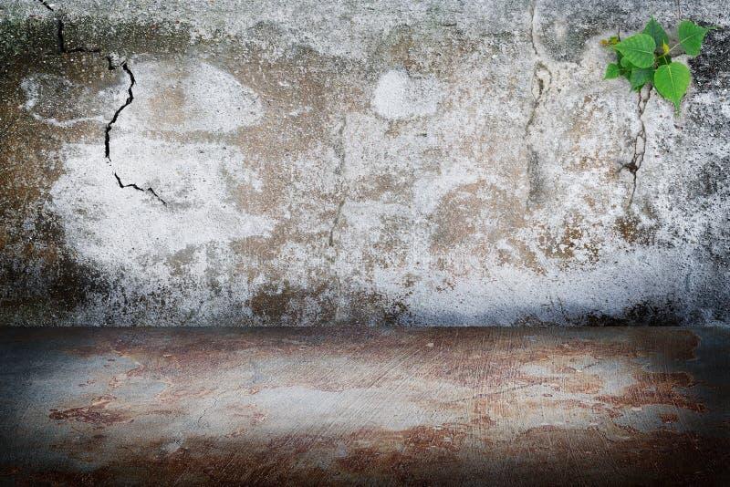 Старая бетонная стена темной комнаты grunge, ржавчина пятнает конкретный пол b стоковая фотография