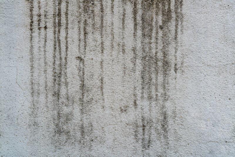 Старая бетонная стена стоковые изображения