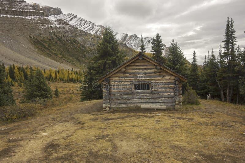 Старая бревенчатая хижина в канадских скалистых горах стоковое изображение