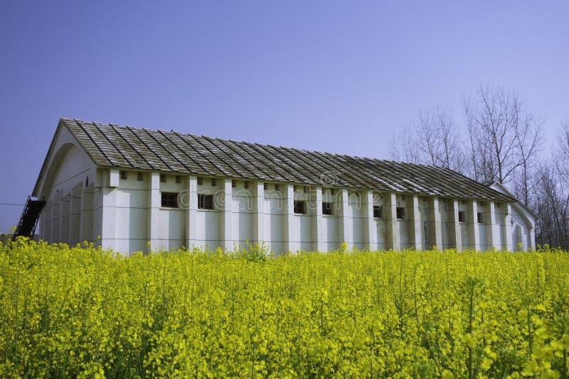 Старая весна склада стоковое фото rf