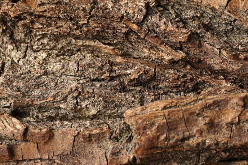 Старая выдержанная деревянная поверхность, текстурированный и детализированный стоковые фотографии rf