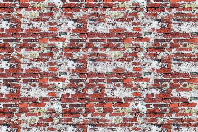 Старая выдержанная кирпичная стена с трассировками старой корозии гипсолита загубила поверхностный низкопробный grunge основания  стоковое изображение rf