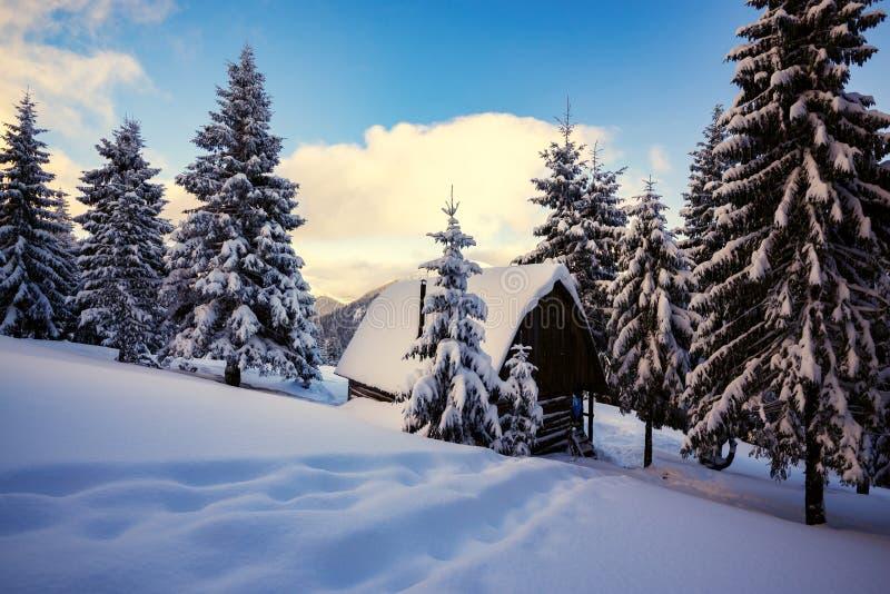 Старая деревянная кабина, покрытая с снегом стоковые изображения