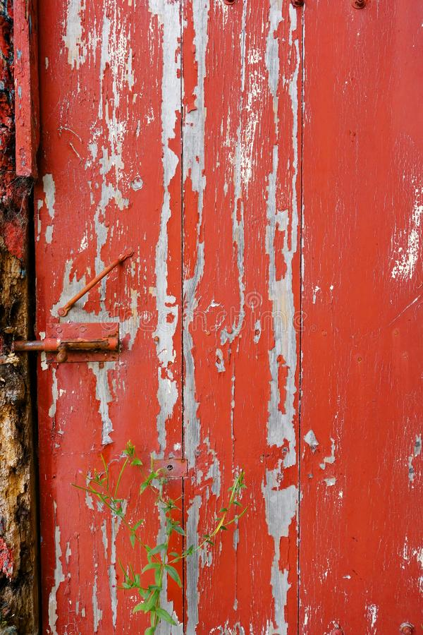 Старая деревянная покрашенная дверь красной стоковое фото