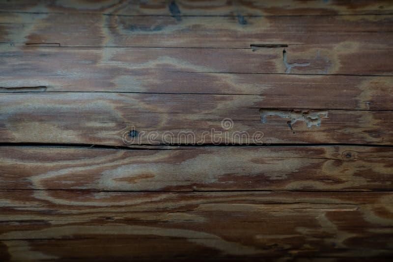 Старая деревянная предпосылка текстуры - старая конфигурация пучка излучения стоковые фото