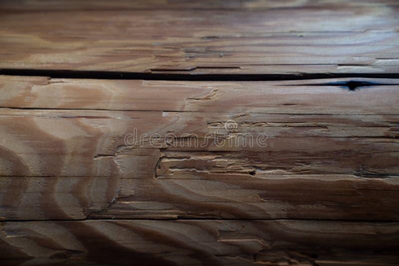Старая деревянная предпосылка текстуры - старая конфигурация пучка излучения стоковые изображения rf