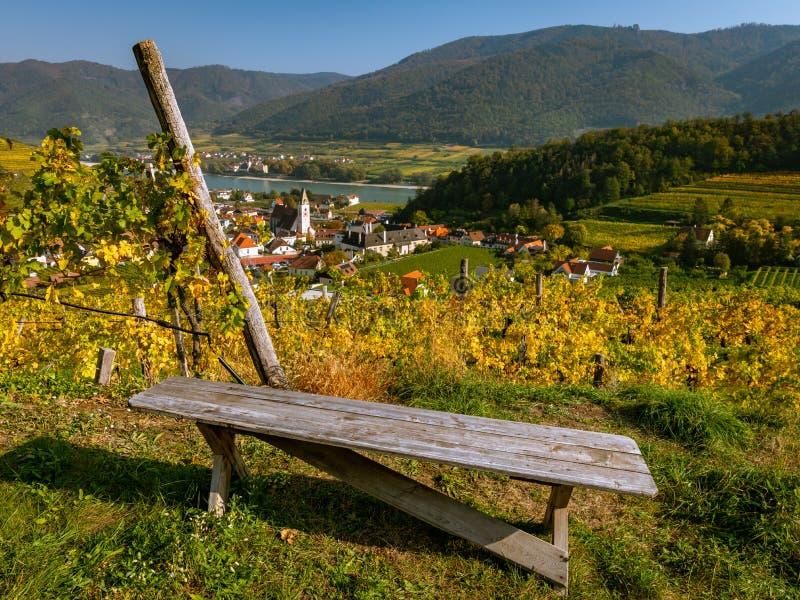 Старая деревянная скамья в винограднике около шпица der Donau в осени стоковая фотография rf