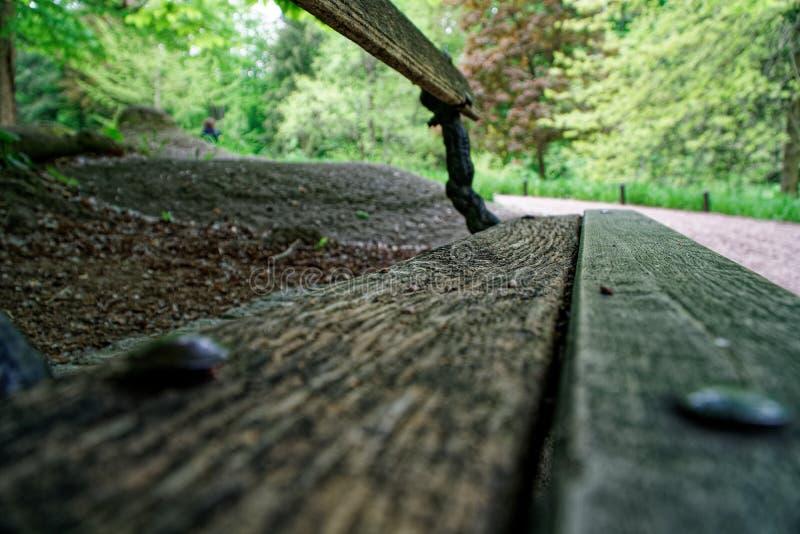 Старая деревянная скамья, место для ослабляет и раздумье стоковые изображения rf