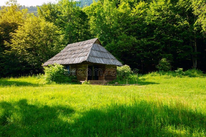 Старая деревянная хата на зеленом луге горы стоковое фото