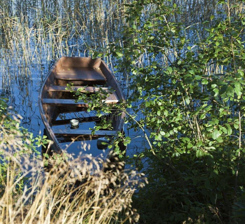 Старая деревянная шлюпка на краю озера, тростники, grassunusable, f стоковое изображение