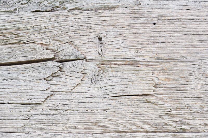 Старая древесина белого дуба для предпосылки или деревянной текстуры стоковое изображение rf