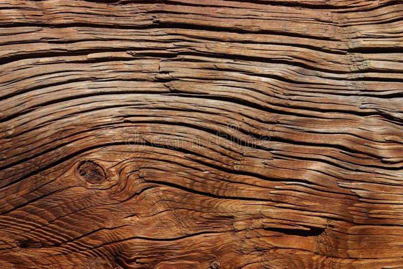 старая древесина стоковое фото