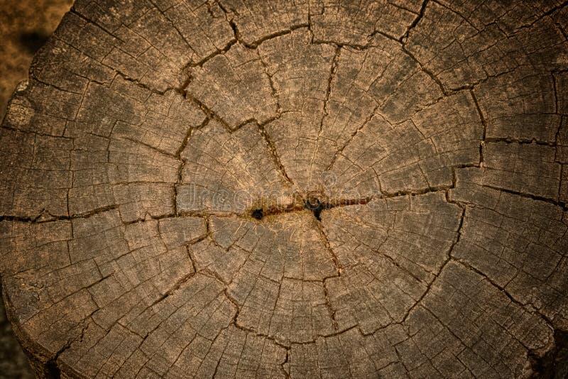 Старая деревянная обработанная резанием поверхность стоковое фото