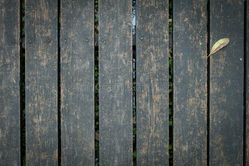 Старая деревянная дорожка с падать выходит в утро осени стоковое фото rf