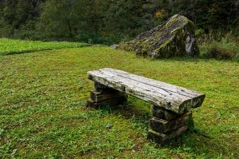 Старая деревянная скамья в зеленом луге стоковая фотография