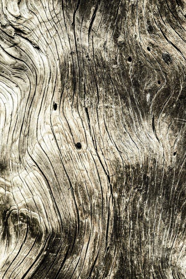 Старая деревянная текстура с естественными картинами стоковое изображение