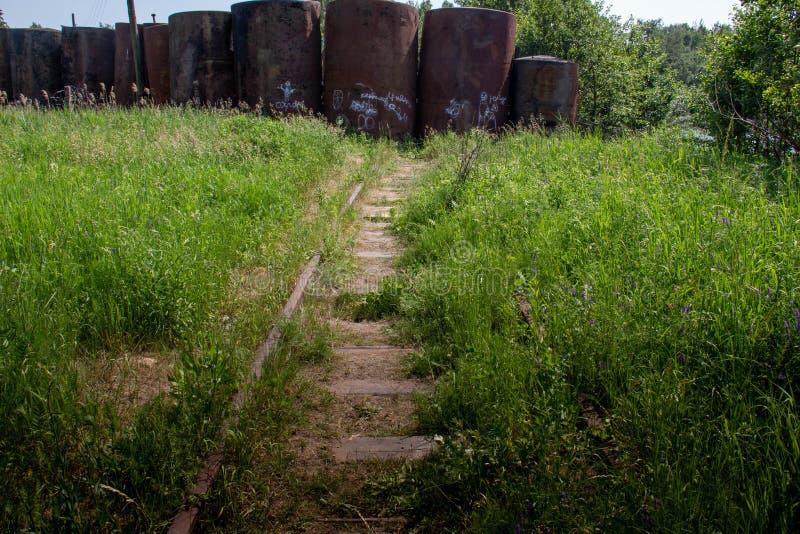 Старая железная дорога перерастанная с травой стоковое изображение rf