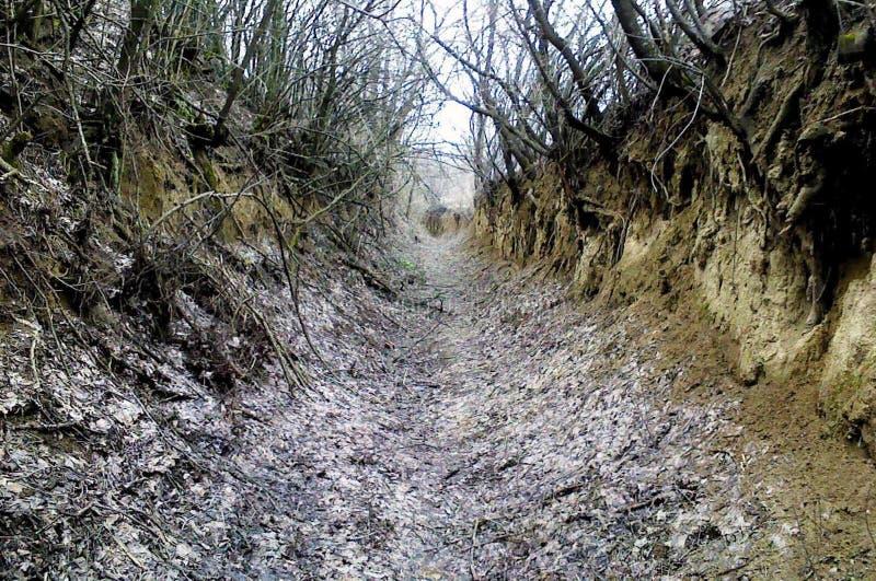Старая забытая страшная дорога к нигде стоковые изображения rf
