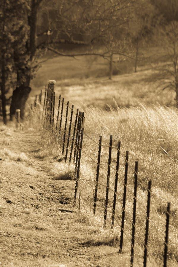 Старая загородка фермы стоковая фотография rf